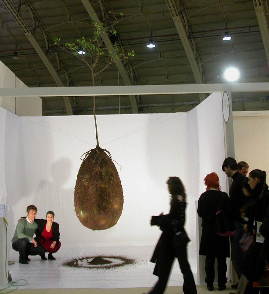 biodegradable-burial-pod-memory-forest-capsula-mundi-4