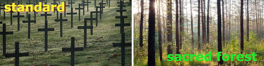 biodegradable-burial-pod-memory-forest-capsula-mundi-7